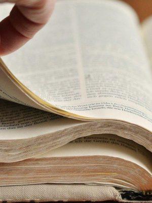 bible89